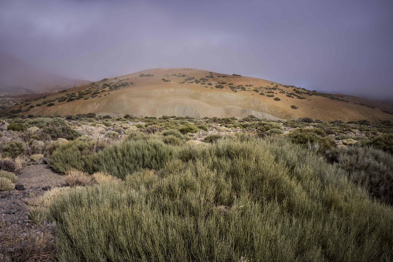 De Outback van Tenerife