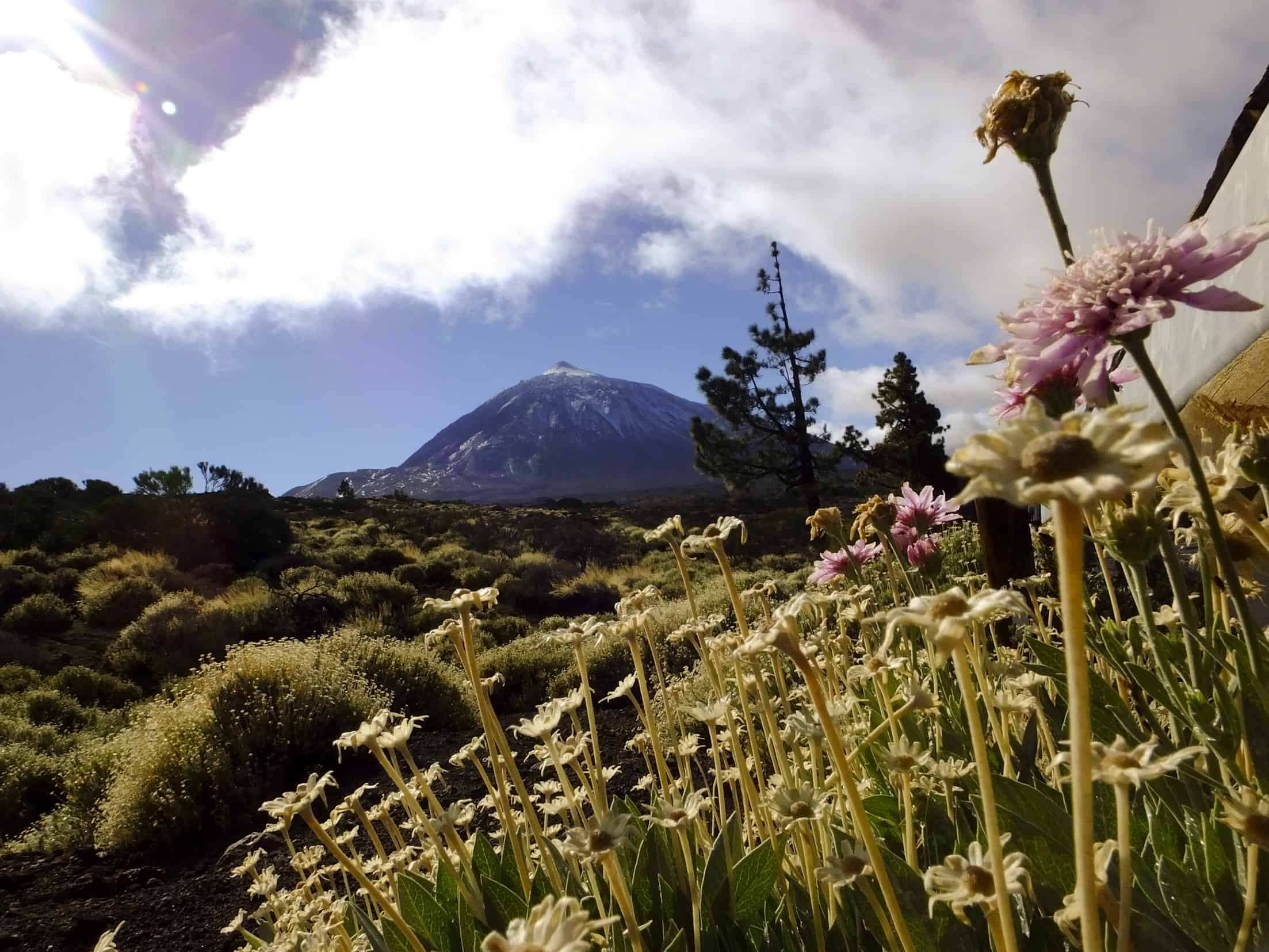De witte top van Pico del Teide