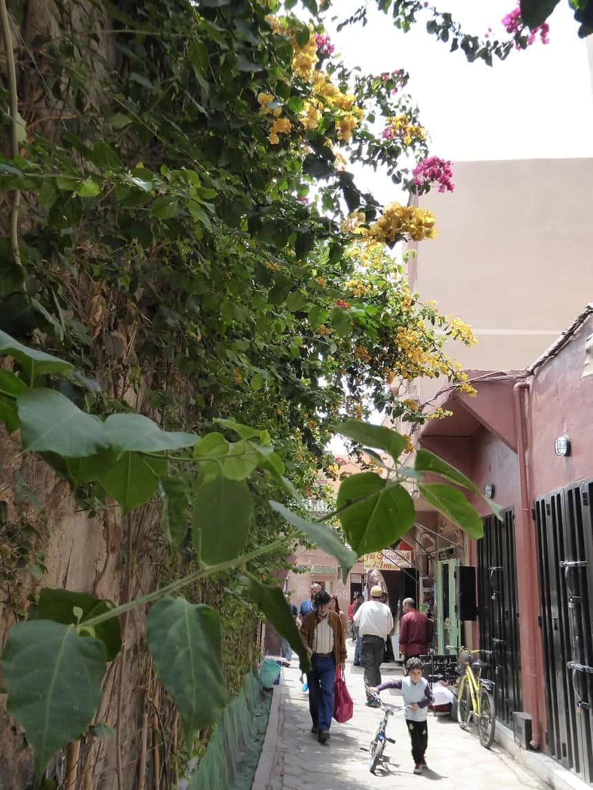 Zinderend Marrakesh