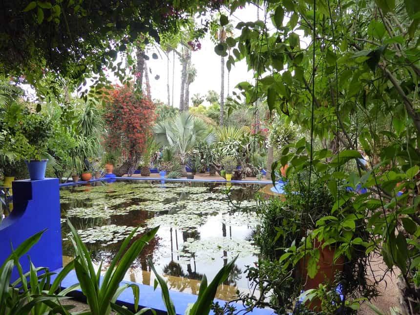 De kleurrijke Jardin Majorelle is een oase van rust in de anders zo drukke stad