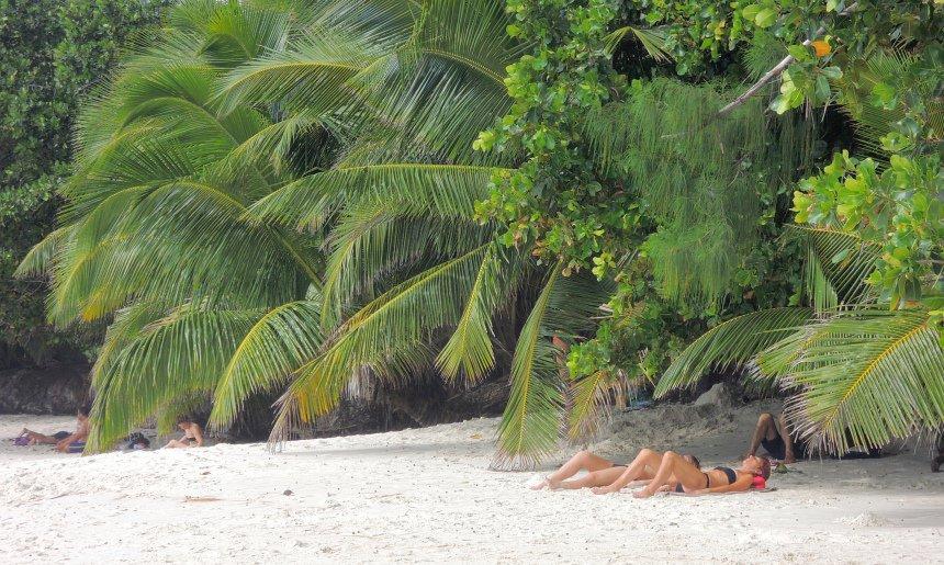 Op het eiland Praslin ligt het mooiste en meest romantische strand van de wereld: Anse Lazio.