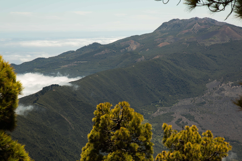 natuur La Palma