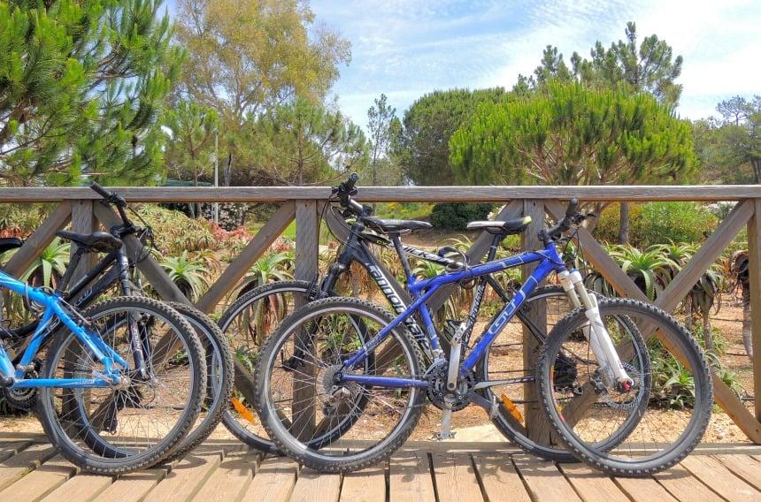 Biken, paardrijden op het strand, of liever golfen...