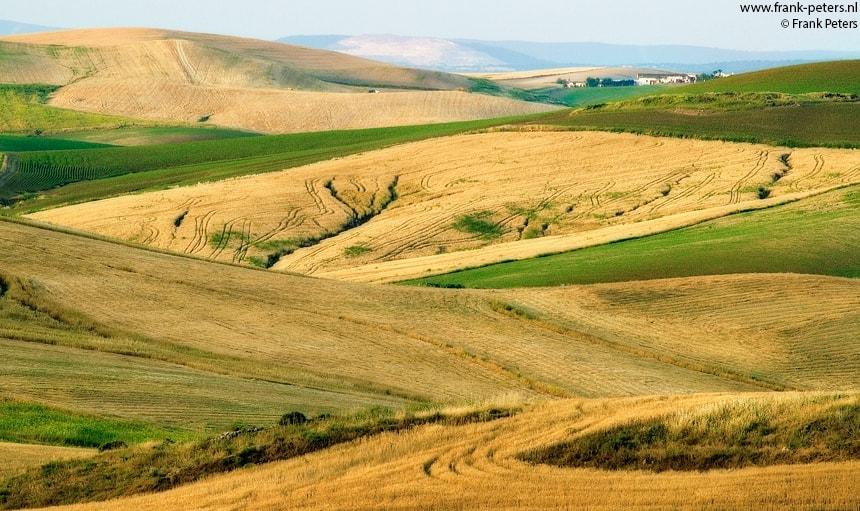 Boerderij in het Gele Land, Loma de las Garrapatas, Andalusie, Spanje