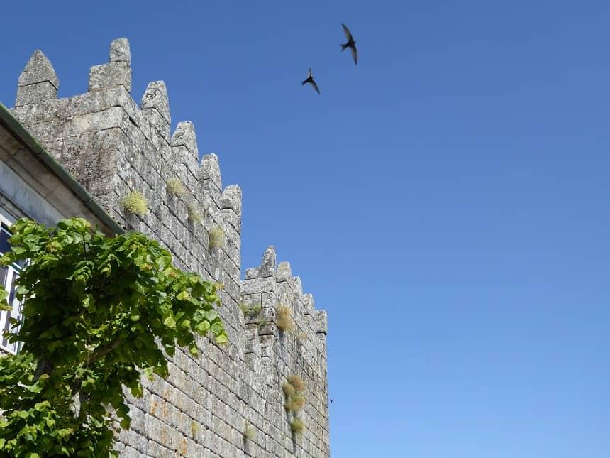 stadsmuur Trancoso