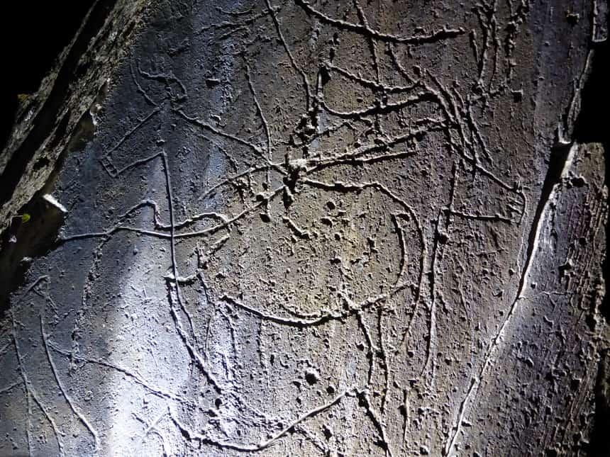 Prehistorische rotskunst in de Côa Vallei