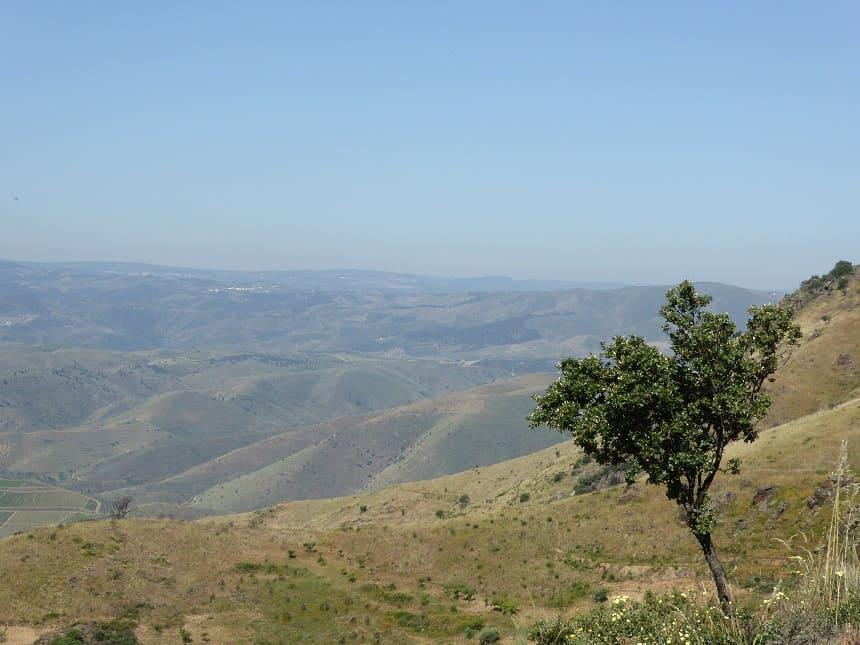 De indrukwekkende en landelijke omgeving van de Côa Vallei
