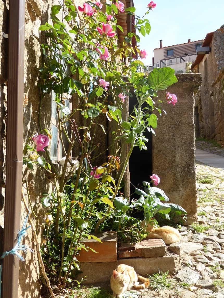 Ontdek Centro de Portugal in 12 historische dorpen