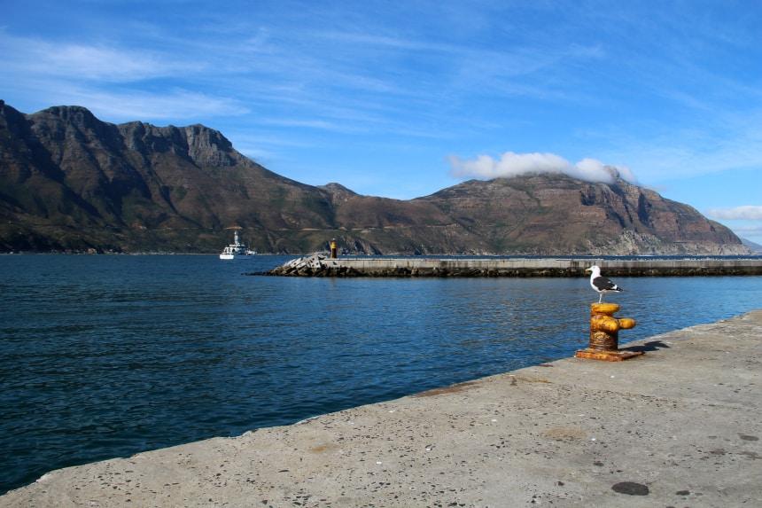 De haven van Houtbay ligt op een halfuurtje rijden van Kaapstad
