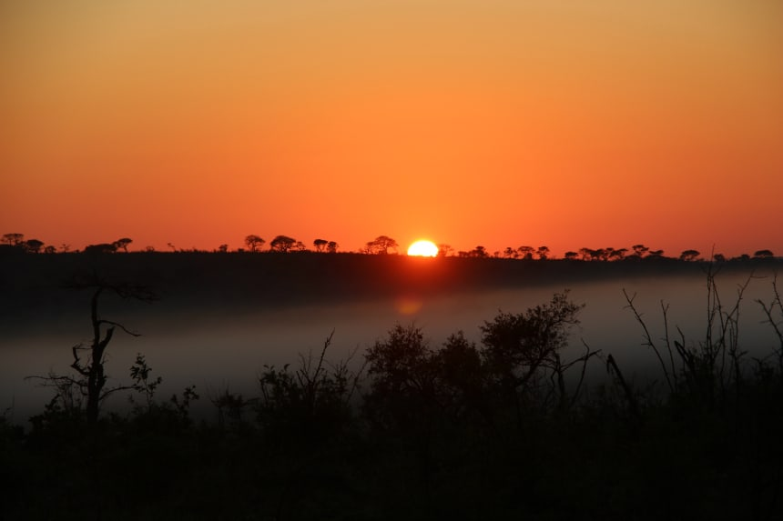 Reistip: sta tijdens je reis door Zuid-Afrika minimaal één keer zo vroeg op dat je de zonsopgang kunt meemaken. De zon zien opkomen tijdens een safari is geweldig!