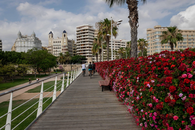 Puente de las Flores Turia