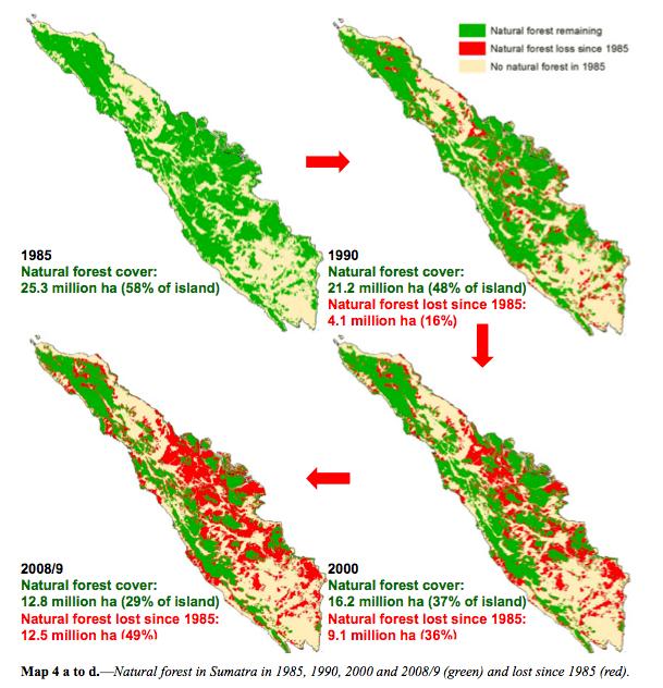 Sumatra ontbossing