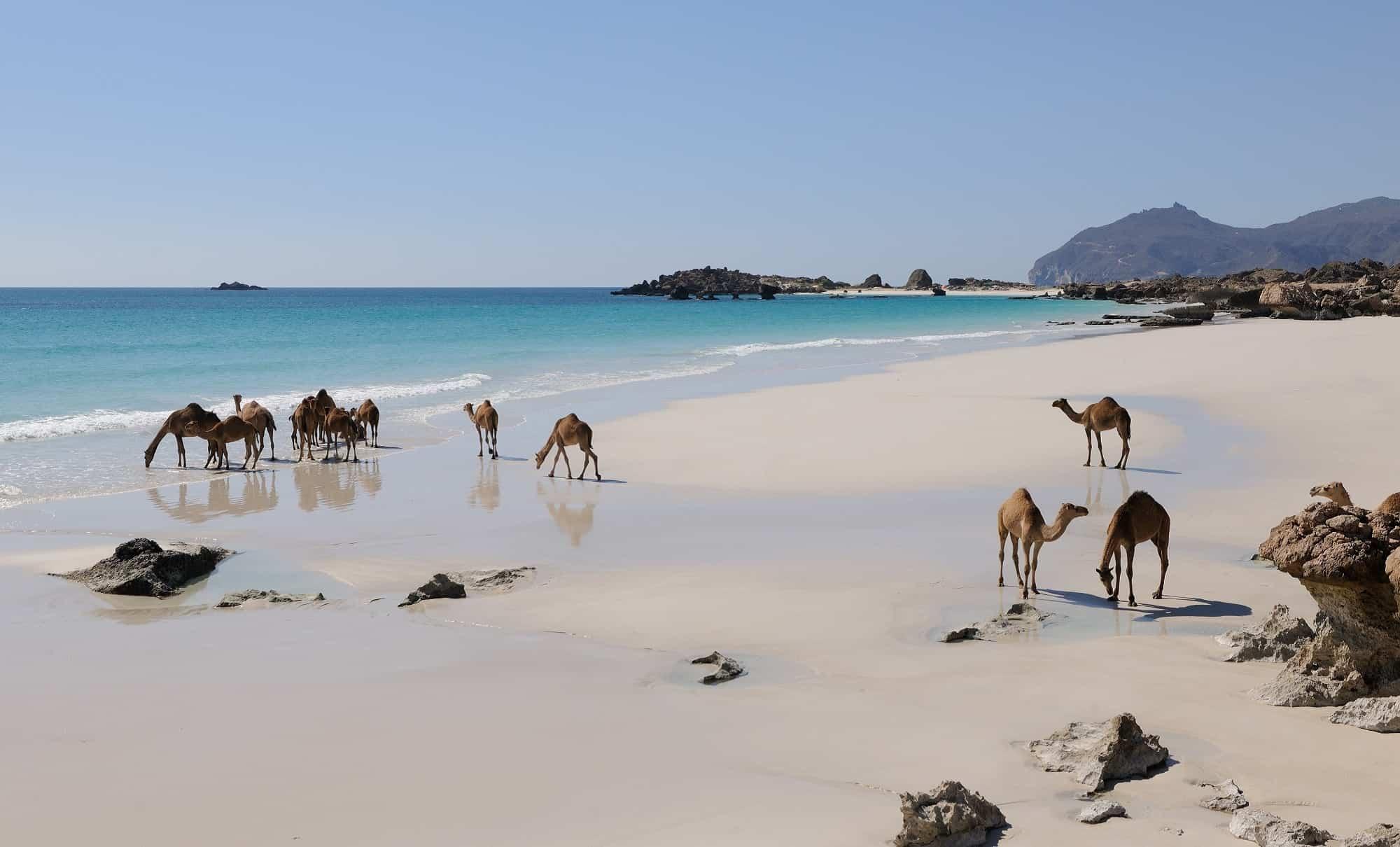 Zomervakantie Oman