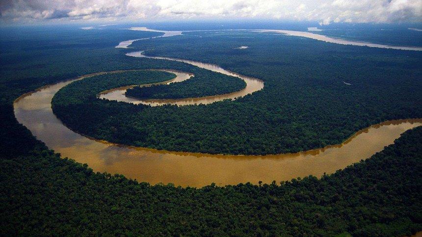 Amazone gebied