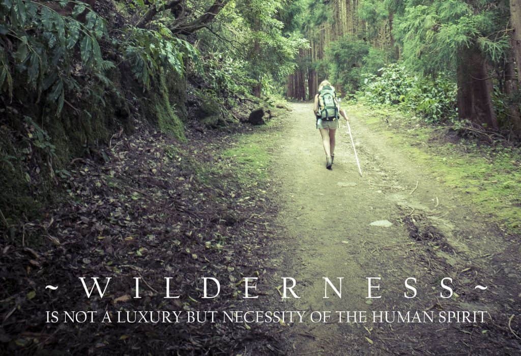 Wilderness - not a luxury but a necessity