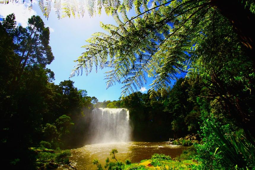 Rainbow Falls, Bay of Islands