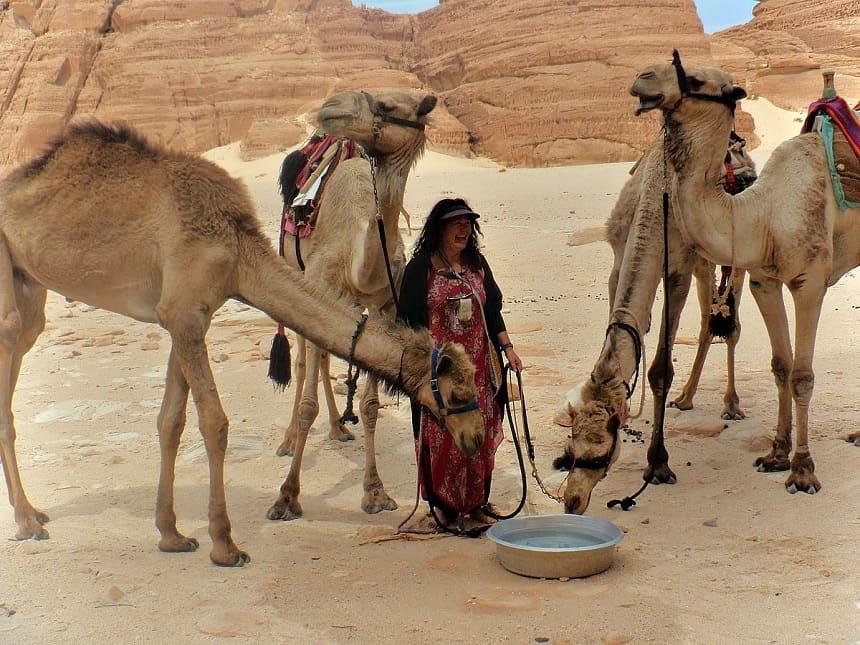 Joyce en haar 4 kamelen nu