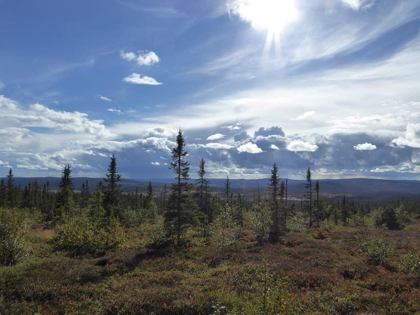 ovenop de Trysilfjellet heb je de gelegenheid tot een prachtige mountainbikerond of wandeltocht!