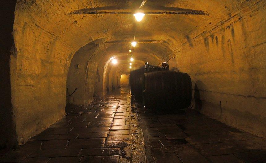 Deze kilometers lange gangen vormden tot kort geleden de opslagkelders voor het gerstenat.