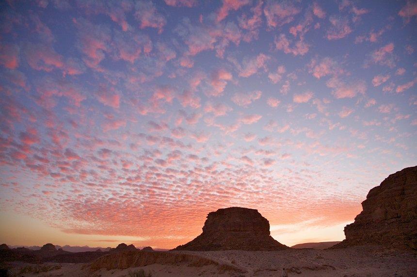 Sinaï-woestijn