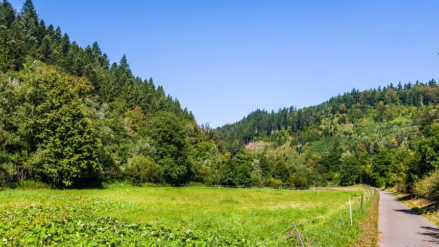 Groene weiden die een mooie opmaat bieden naar de heuvels met donkergroene naaldbomen die het Zwarte Woud kenmerken