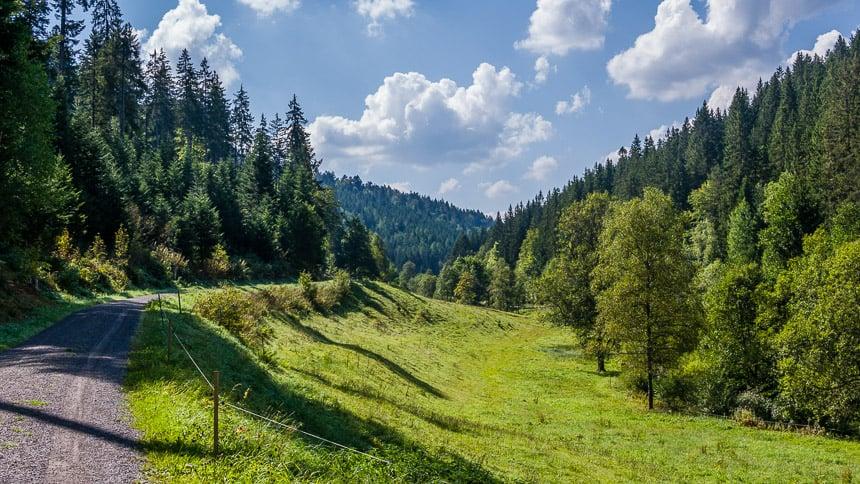 Weilanden en groene wouden