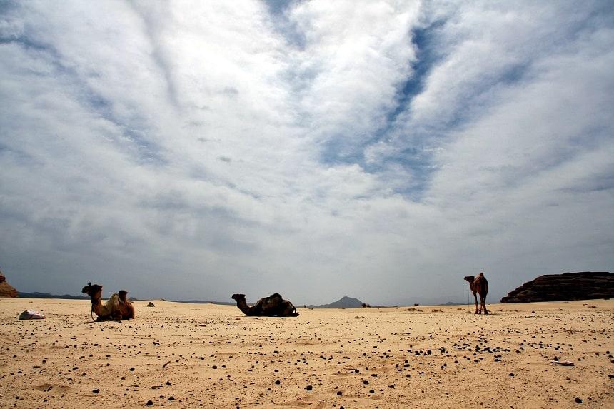 woestijntrektocht