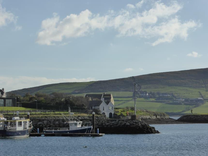 Dingle Town ligt prachtig aan een baai en de haven ligt daardoor mooi in de luwte. Ideaal om Fungi te spotten!