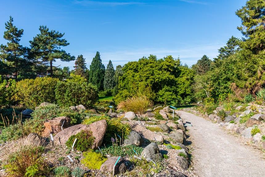 Soortenrijkdom in de Botanische tuin.