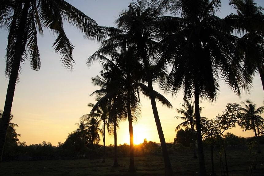 Zonsondergang tussen de palmbomen op Gili Trawangan