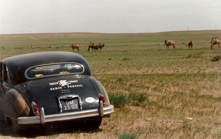 Met de Jaguar in de Gobi-woestijn