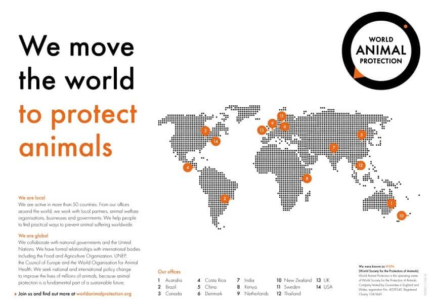 World Animal Protection dieren beschermen