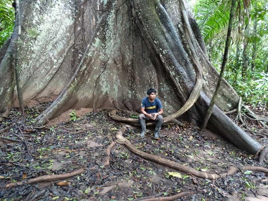 Julio geeft college tijdens onze eerste tropische tocht door het regenwoud