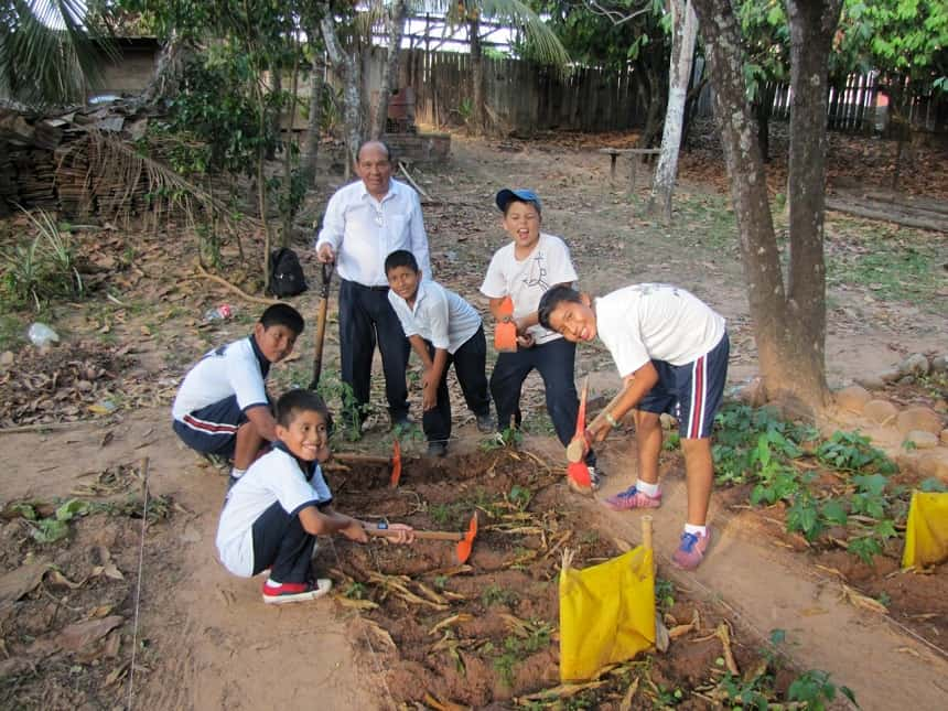 Basiseducatie begint bij de jongsten, zij leggen schooltuintjes aan