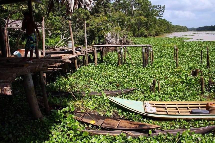 Kano Orinoco Delta