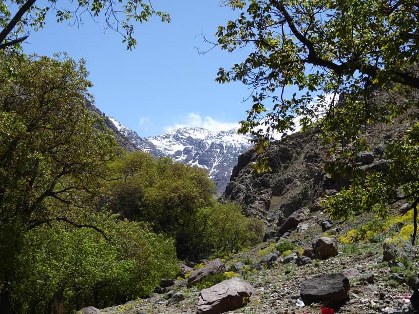 Terwijl het in de vallei 35 graden is, valt er gewoon eeuwige sneeuw in de Hoge Atlas te spotten