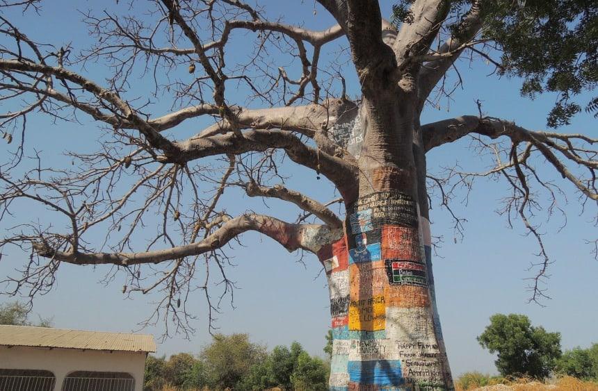 Een baobab-boom als reclamebord.