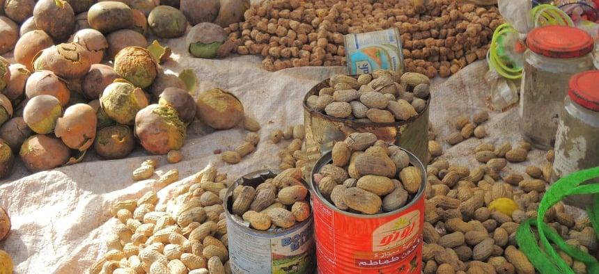 Hét lokale (export)product: pinda's.