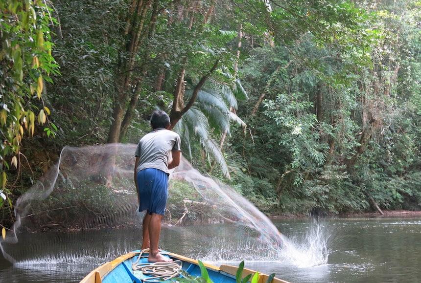 Vissen Borneo
