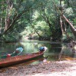 Buitengewoon Bijzonder Borneo