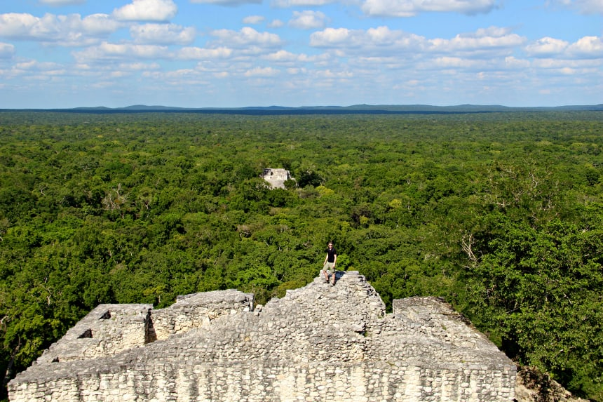 Het uitzicht over de jungle vanaf de Mayatempel van Calakmul in Mexico