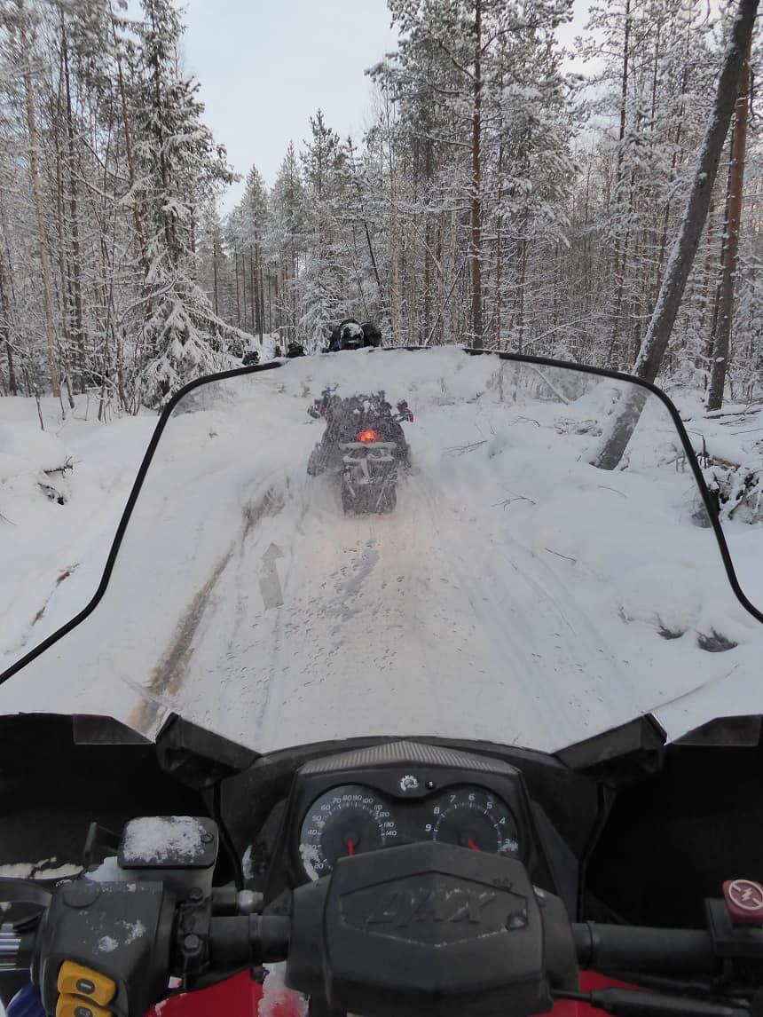 Het beste van alle tochten zijn natuurlijk de fantastische uitzichten op de besneeuwde bossen.