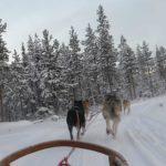 Omarm je winterdip in Rovaniemi
