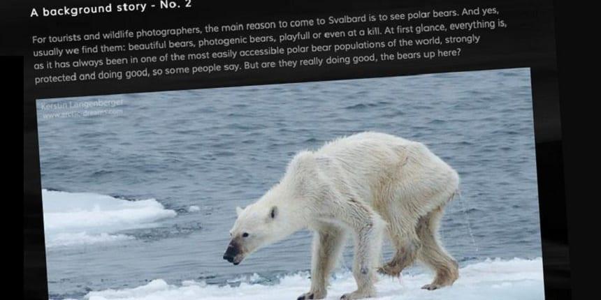 Foto van Kerstin Langenberger van de extreem dunne ijsbeer