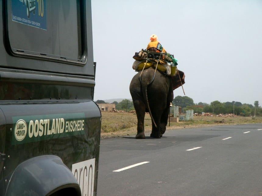 Olifant India