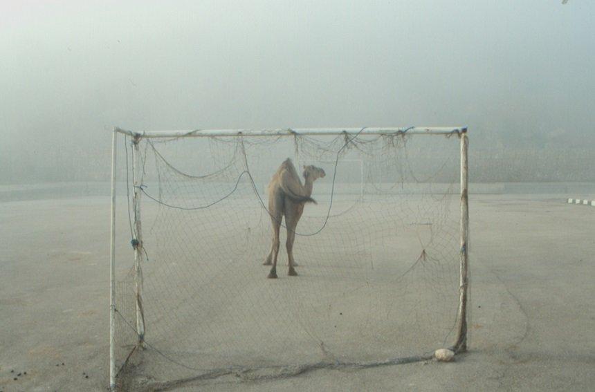 Bij de grenspost Oman-Jemen doden we onze tijd met een potje voetbal. De kameel is doelman