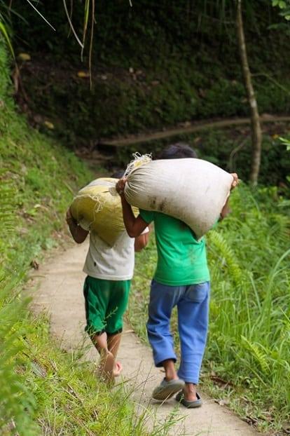 Twee sterke jongens in Batad