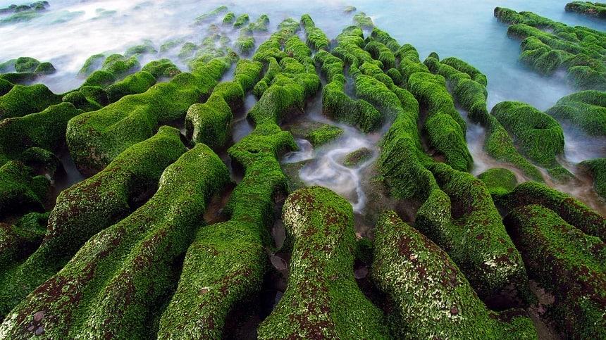 Laomei Reef