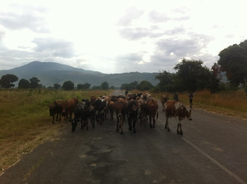 Weg in Malawi