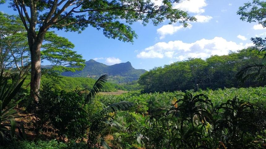 Biodiversiteit op Mauritius
